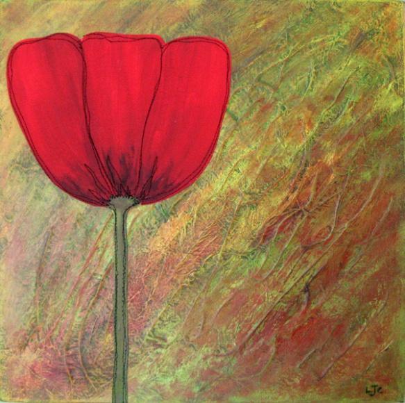 poppy-on-texture